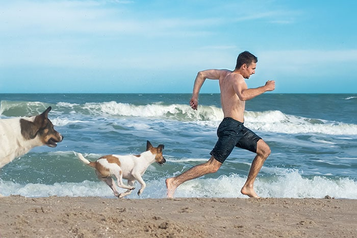 Man running from angry dogs on the beach